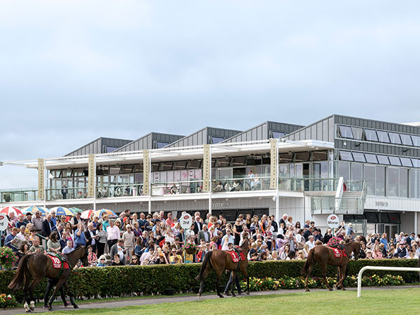 Wilson Lynch Building, Galway Racecourse